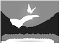 bill-logo